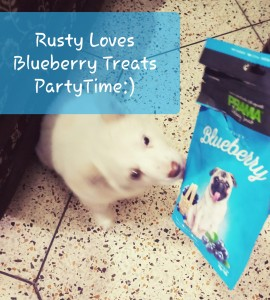 Treats for our Rusty (19-Feb-2020)